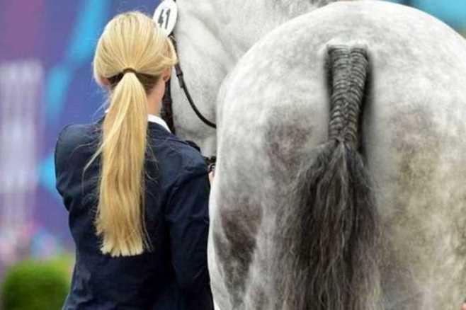 Kuda Ekor Kepang