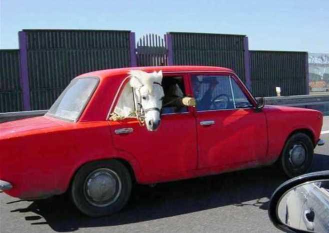 Mobil Sedan Multifungsi